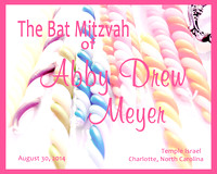 Bat Mitzvah Celebration of Abby Meyer